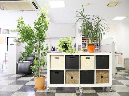 美容室 サロンドコームの写真