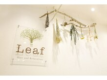 リーフ ヘアアンドリラクーゼーション(Leaf hair&relaxation)の雰囲気(男性のお客様も多数ご来店♪植物を多く取り入れた癒される空間☆)