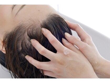 スピリットオブヘアネイティヴ(Spirit of Hair NATIVE)の写真