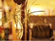 カヤ ヘアワークス(KAYA HAIR WORKS)の雰囲気(細部にこだわりが見える店内にはこだわりの観葉植物が♪)