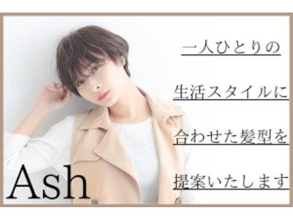 アッシュ 新子安店(Ash)の写真
