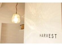 ハーベスト(HARVEST)の雰囲気(一人一人に合わせたキレイをお届けします☆)