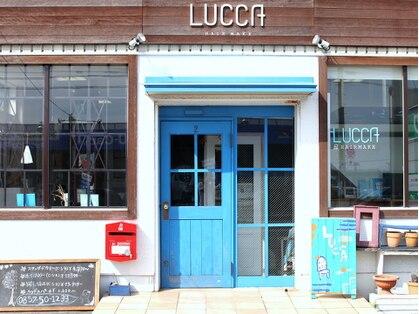 ルッカ LUCCAの写真