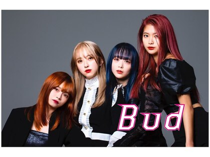 バド(Bud)の写真