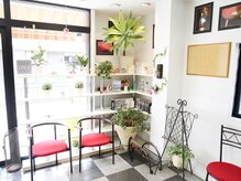 美容室 サロンドコームの雰囲気(緑がいっぱい☆アットホームな雰囲気でリラックスできるのが◎)
