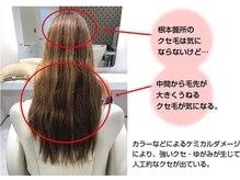 艶髪が続く新発想のテクノロジー【サイエンスアクア美髪チャージ】本物の髪質改善で自分史上最高の艶髪へ