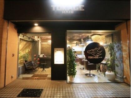 トカゲ ヘアー(TOKAGE HAIR)の写真