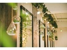 ルクスス(Ruxus)の雰囲気(緑のある落ち着いた店内で是非癒されてください 【駒沢大学駅】)
