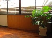 ソエル(Sowelu)の雰囲気(隠れ家的ですが、やさしい光に照らされます。)