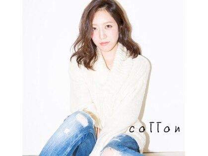 コットン(cotton)の写真
