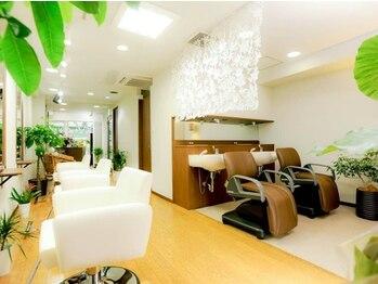 ノア(Noa)の写真/《オーガニックカラー+カット+トリートメント¥8100》ゆったり寛げるカフェのような柔らかい雰囲気が魅力♪