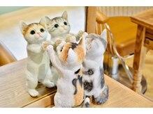 ブレンド ロシェル 元住吉店(Blend Roshelle)の雰囲気(ネコちゃん!癒し感あふれるセット面。癒しの時間が流れます...)