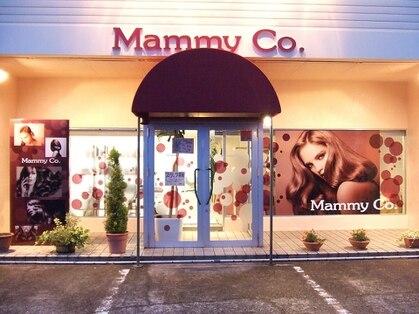マミーコー 大野店(Mammy Co.)の写真