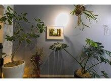 フォンクオアンド(foncuo&)の雰囲気(店内は植物が多く、ゆったりとくつろげる空間。コロナ予防対策)