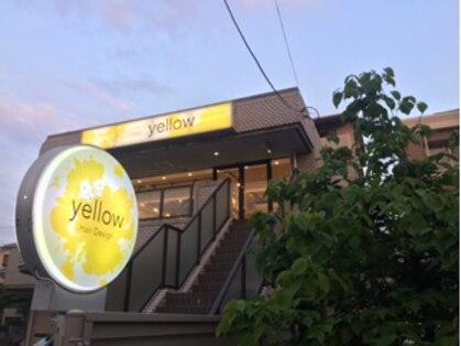 イエロー(yellow)の写真