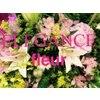 エレガンス フルール(ELEGANCE fleur)のお店ロゴ