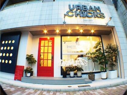 アーバン チックス(URBAN CHICKS)の写真