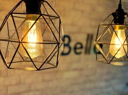 ベラ(Bella)の写真
