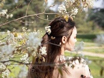 カラー(KOLOR)の写真/【銀座】本場イタリアのオーガニック薬剤を使用。刺激や匂いが少ない心地の良い使用感が大人気
