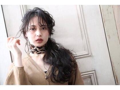 ヴィオラ(Viola)の写真