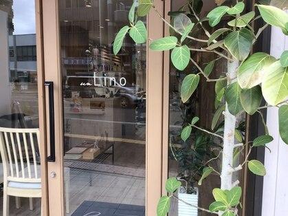 リノ(un Lino)の写真