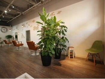 リブレ(Libre)の写真/【椥辻駅すぐ!】緑のあふれる開放的な店内は、幅広い年齢層に好評♪落ち着ける空間で、自分磨きしよう♪