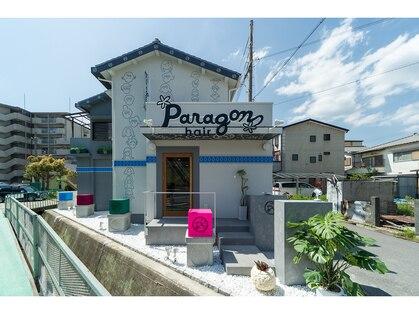 パラゴンヘア(Paragon hair)の写真