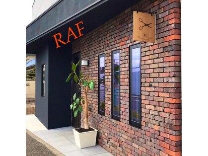ラフ(RAF)の写真