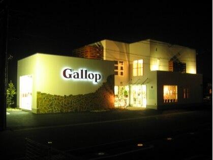 ギャロップ Gallop 画像