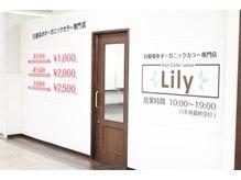 リリー 岸和田店(Lily)