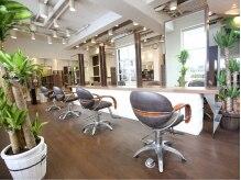 レイルヘアーデザイン(reil HAIR DESIGN)の雰囲気(ゆったり寛いで頂ける様に席の間隔を広くしているセット面)