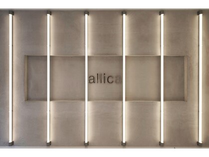 アリカ(allica)の写真