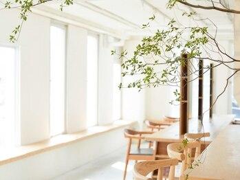 アビキュー(abiquiu)の写真/[渋谷駅徒歩7分]オトナ可愛いならココ!陽の光が差し込む、ウッド調の温かみある店内で寛ぎのサロンTimeを♪
