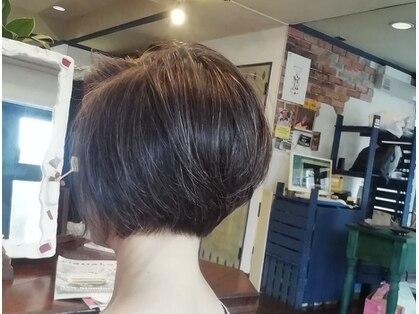 ティンク Hair Tinkの写真