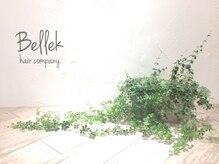 ベリーク(Bellek)の雰囲気(植物も映える内装です。)