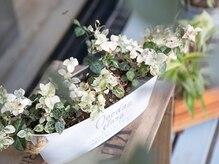 ルカヘアー(Luca hair)の雰囲気(花や緑があなたを温かく迎えてくれます)