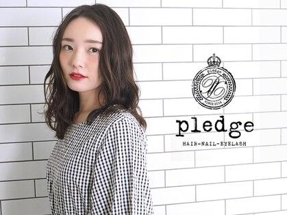 プレッジ(pledge)の写真