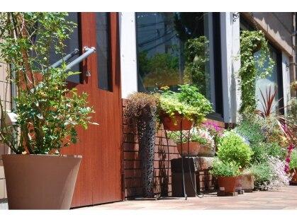 ゲッカガーデン たまプラーザ(gecca garden)の写真