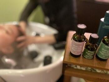 ビファインイーハアヴェダ(Befine e-ha AVEDA)の写真/[完全個室スパも有]頭皮と髪の乾燥が気になる方に必見の極上スパ☆全てのコースにアロマ診断付!