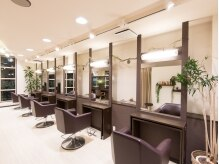 hair make salon plus citta'