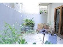 ポコリ(pocori)の雰囲気(自然光と植物があふれる入り口)