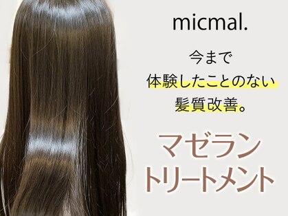 ミクマル(micmal)の写真