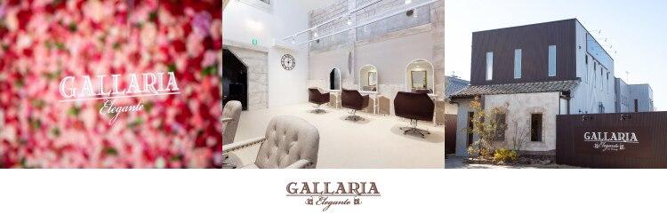 ガレリアエレガンテ 可児店(GALLARIA Elegante)のサロンヘッダー
