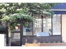 アオゾラヘアー フジサキグウ(AOZORA HAIR FUJISAKIGU)の雰囲気(3号線☆藤崎宮交差点沿いの1階♪シンボルツリーが目印です☆)