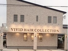 ビビッドヘアーコレクション(VIVID HAIR COLLECTION)