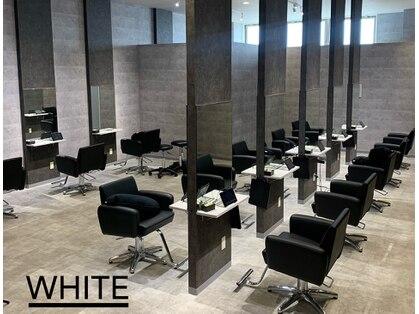 アンダーバーホワイト 鳳店(_WHITE)の写真