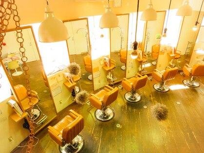 ストロボアリア 並木店(Stro-Bo aria)の写真