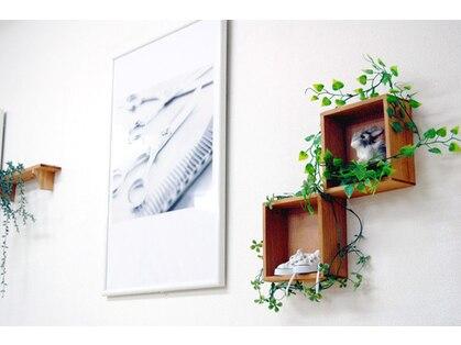ブルームミルフィーユ(bloom millefeuille)の写真