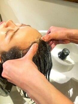 バーシャミ ヘアーアンドスパ(Baciami Hair&Spa)の写真/頭皮から髪のことを考える♪頭皮を健康に保ち、髪のハリ・コシ・艶UP!!頭皮へのアプローチで髪も健康的に!