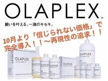 約1年間の検証をもとに「オラプレックス」の効果を発揮する全メニューに「信じられない価格」で完全導入!